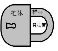5_image1a
