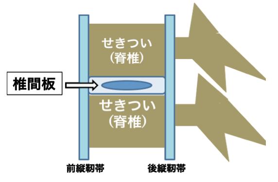 5_image2